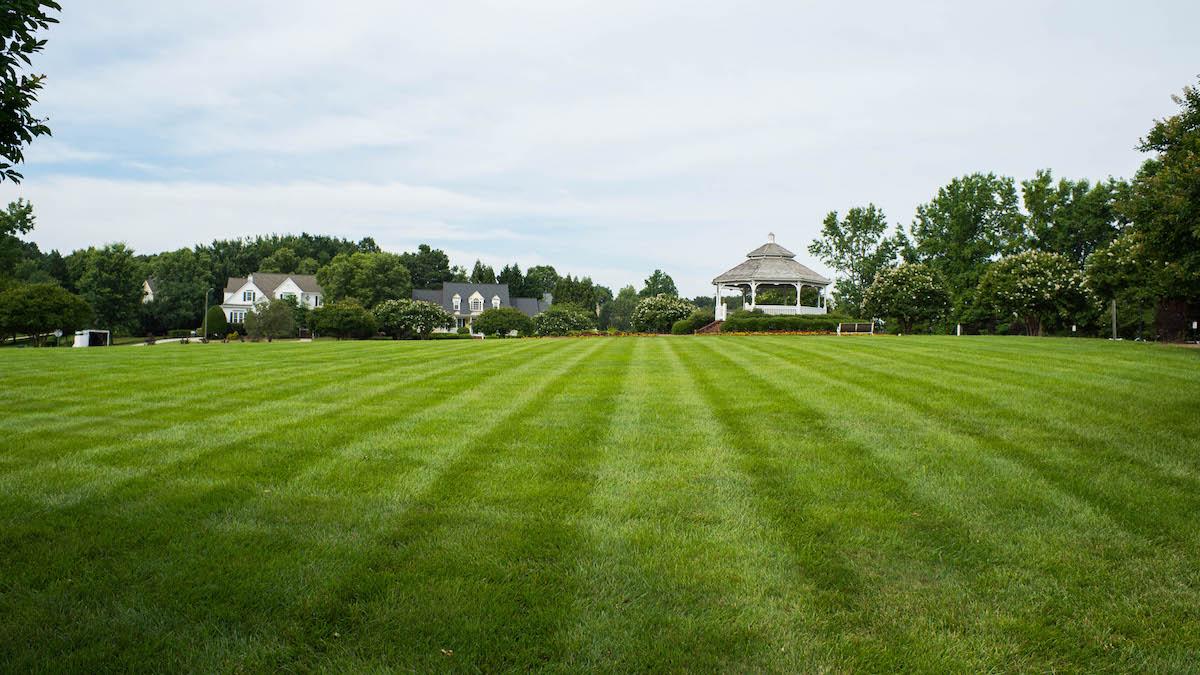 Commercial Landscape Maintenance Raleigh Nc