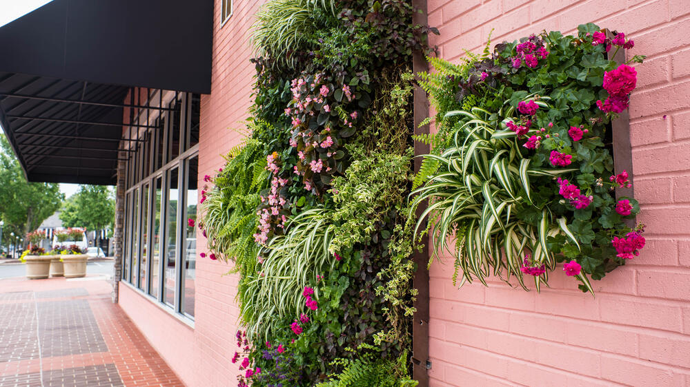 Living walls by created by Greenscape