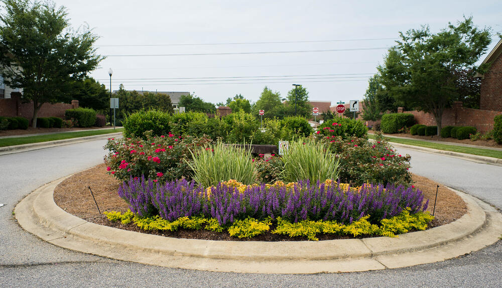 plants and flowers in center of retail landscape