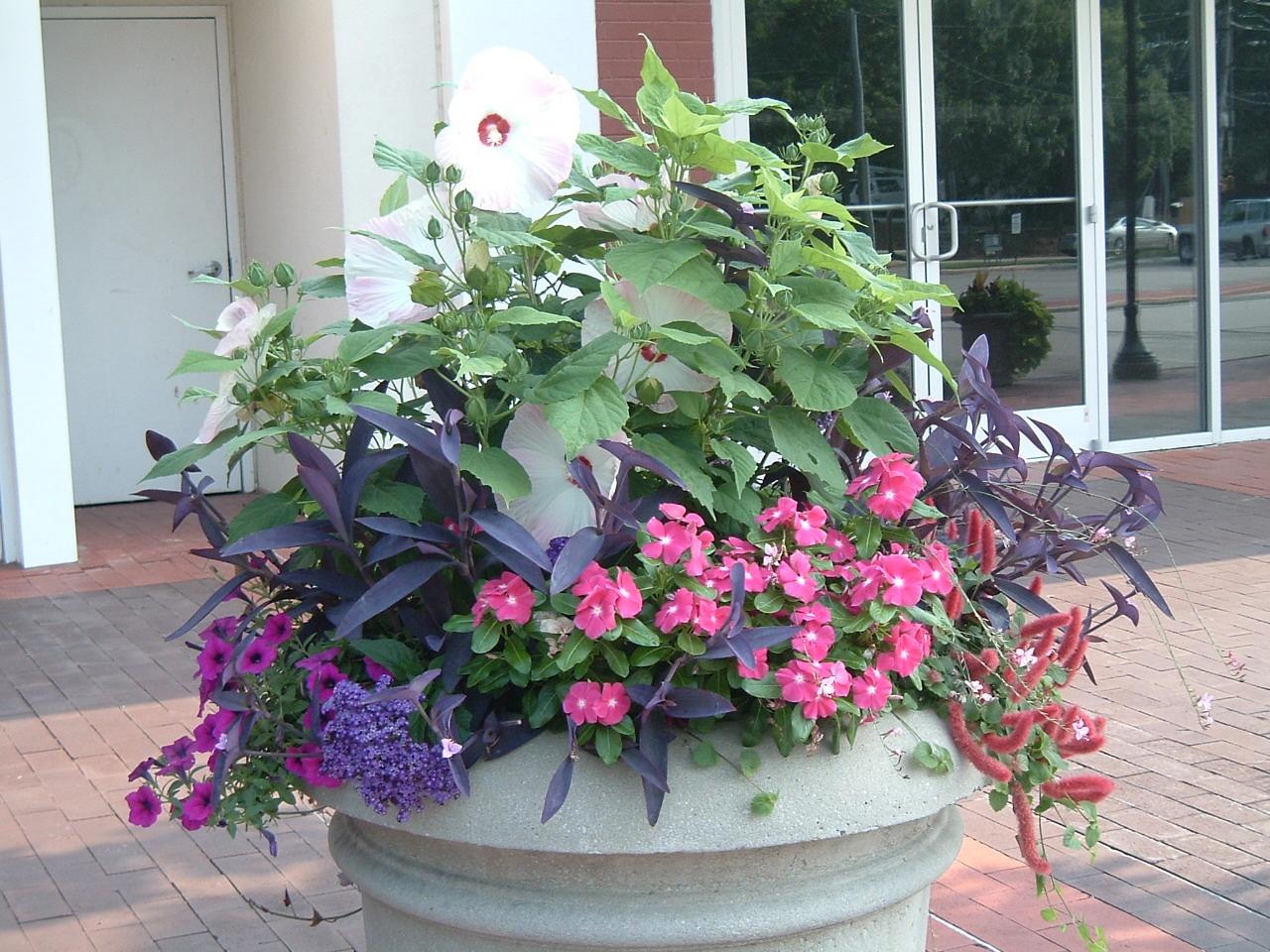 CV pots Large flower pot at store entrance