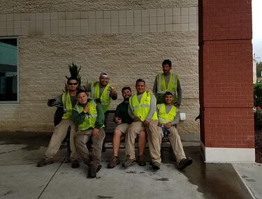 Ryan Truelove and Greenscape landscaping team