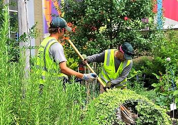Greenscape team providing commercial landscaping services in NC