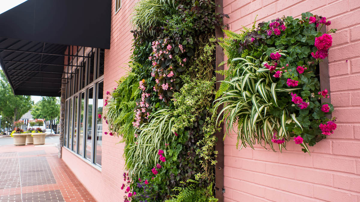Living wall at retail location