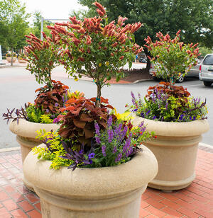 plant pots for hotel landscaping