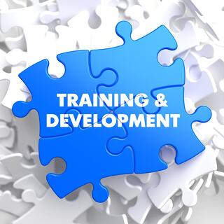 Training and Development written on blue puzzle pieces.