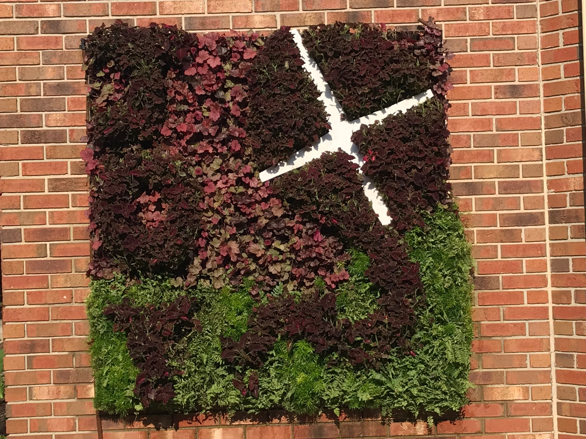 Living Wall at Woodhaven Baptist Church