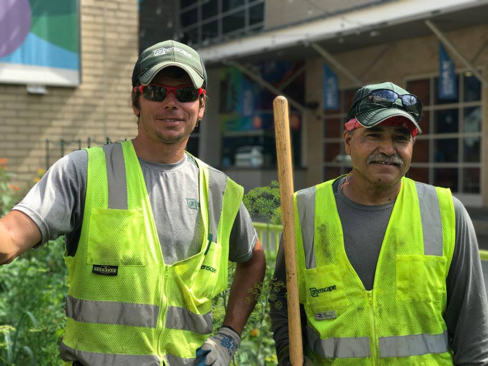 Greenscape Landscaping Employees at work.jpg